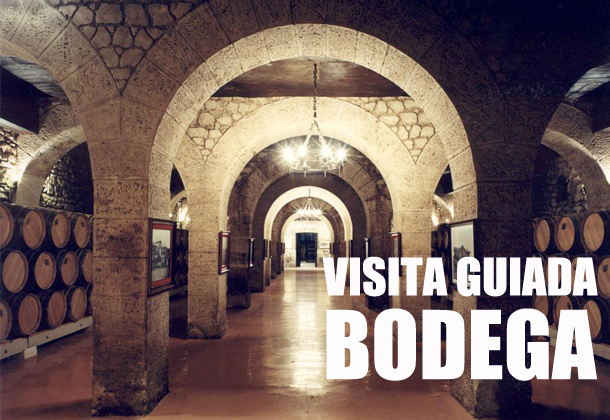 Visita guiada bodega Logroño